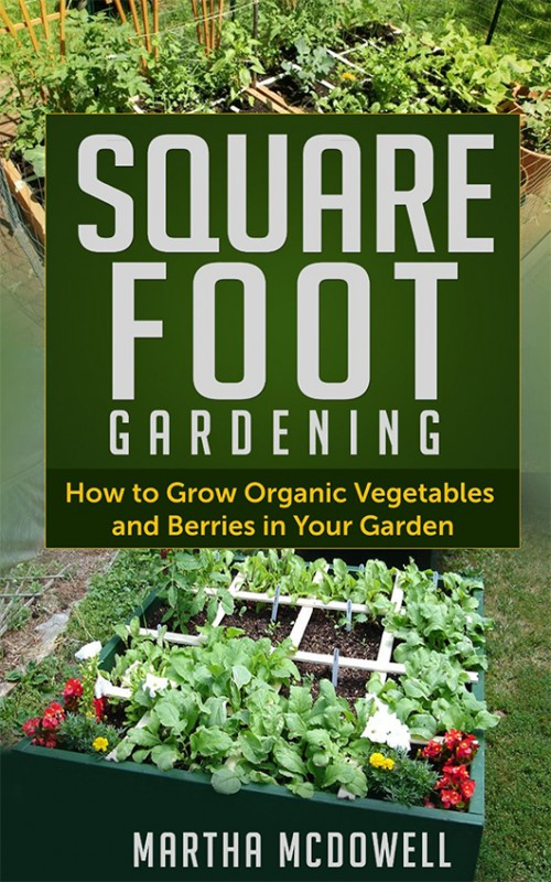 Square Foot Gardening – How to Grow Organic Vegetables in Your Garden