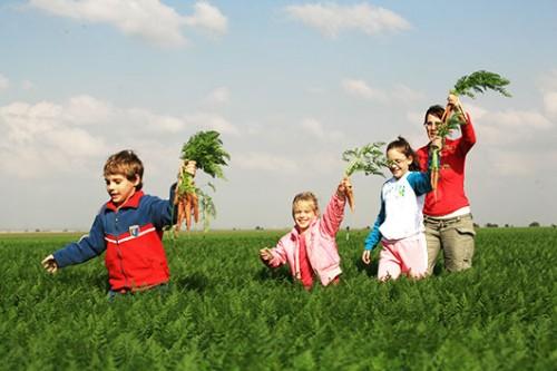 סיור חקלאי בדורות. צילום: דורון הורוביץ