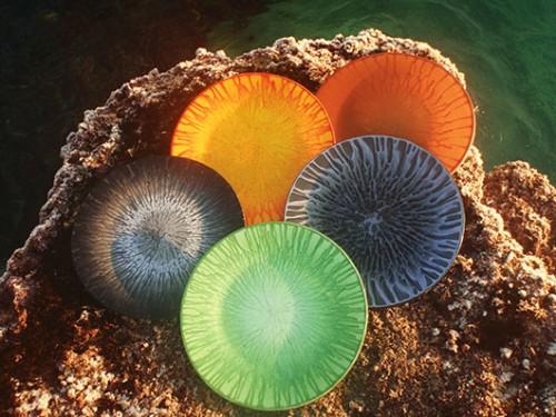 צלחות זכוכית מבית המלאכה של דני קלדרון. צילום: טל גליק