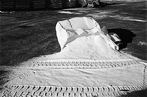 """אלישבע שקד""""ללא כותרת"""", מתוך הסדרה """"מלח הארץ"""", 2014"""