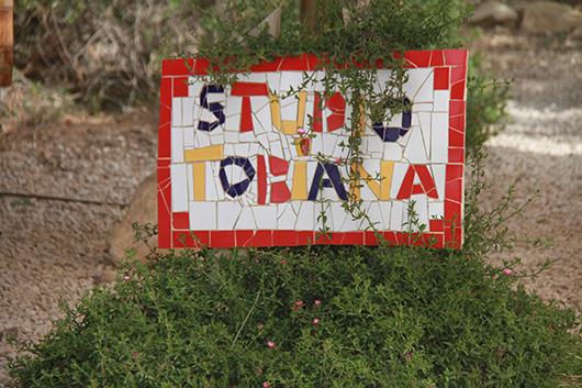 סטודיו טוביאנה. צילום: אורלי גנוסר