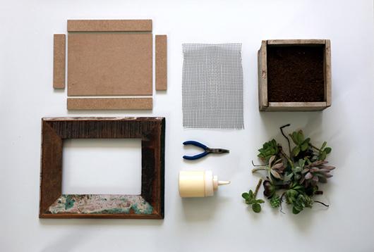 חומרים וכלי עבודה ליצירת סידור סוקולנטים | צילום: לינוי לנדאו