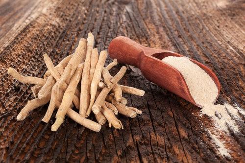 שורש צמח האשווגנדה והאבקה שמופקת ממנו | צילום: Shutterstock