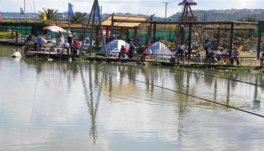 קמפינג בפארק הדיג